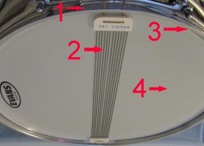 Snare drum anatomy